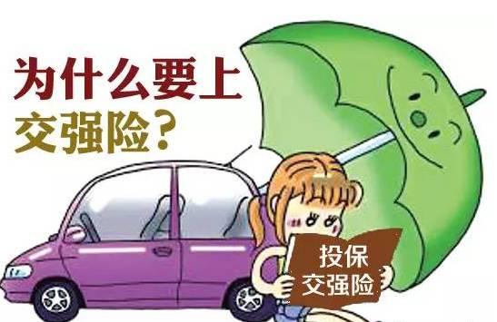 交强险每年都一样吗 车险知识 车主指南