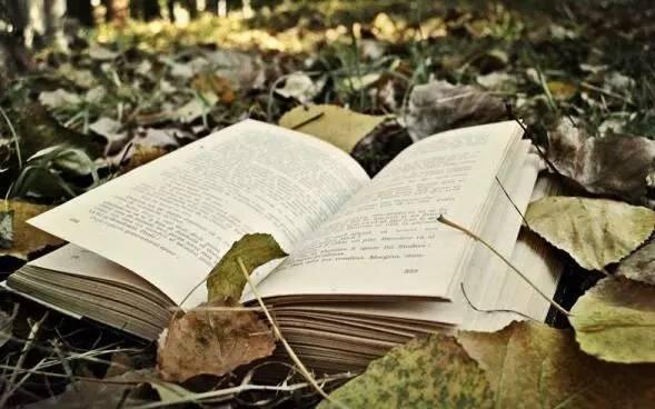文学作品中那些难以忘怀的结尾,你还记得么