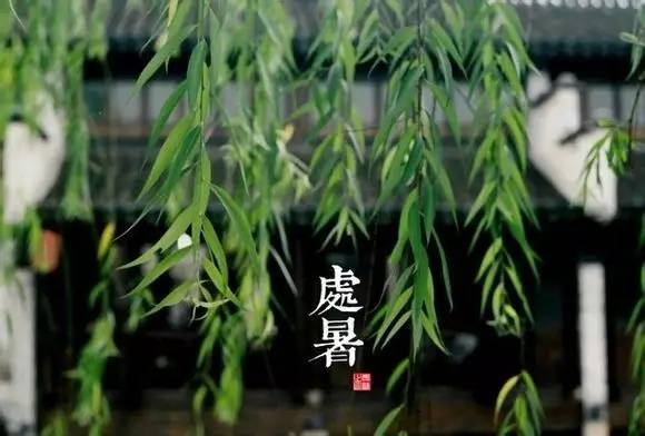 二十四节气在这位上海女孩的镜头下 - NY6536群博客 - 南洋65初三(6)的群博客