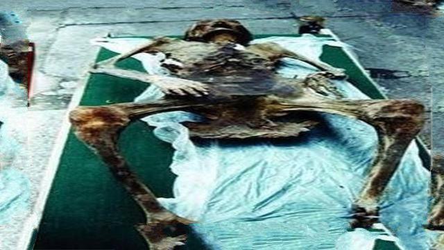 肥胖女尸体_冰封了几百年的尸体,竟然生出孩子,这是真是假?