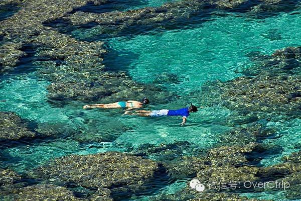 【玩转夏威夷】攻略湾自助游全攻略!仙魔战纪手游恐龙图片