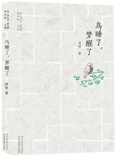 诗集封面手绘梅花