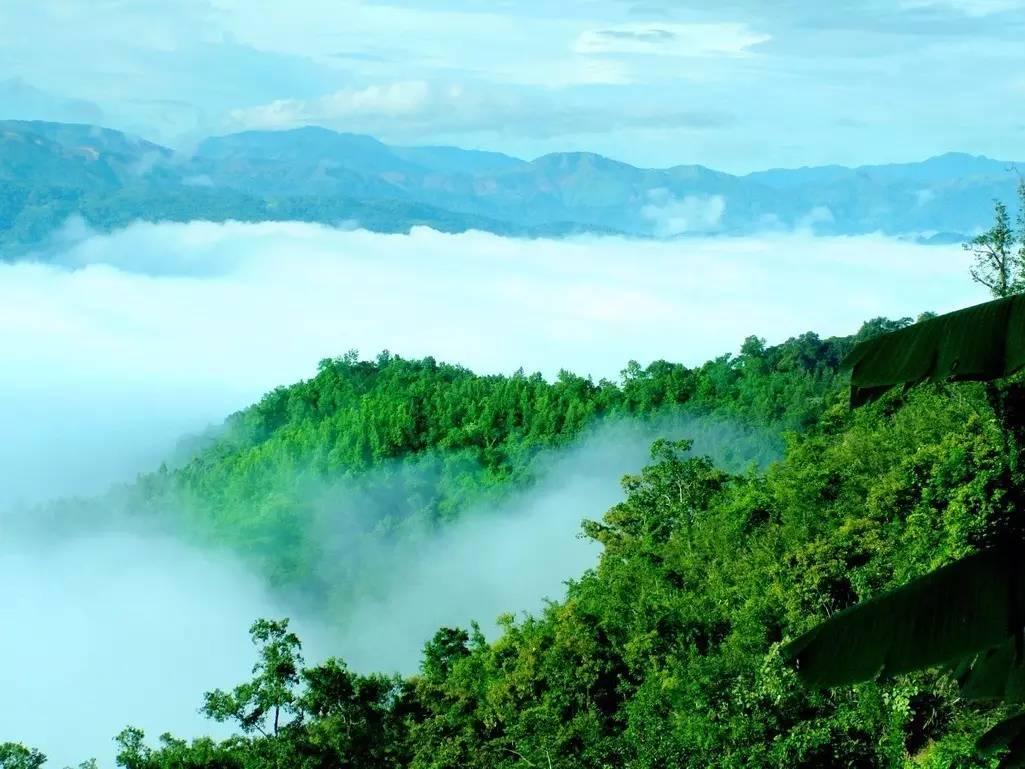 临五指山,黎母山,吊罗山三大国家级森林公园,畅饮南渡江,昌化江,万泉图片