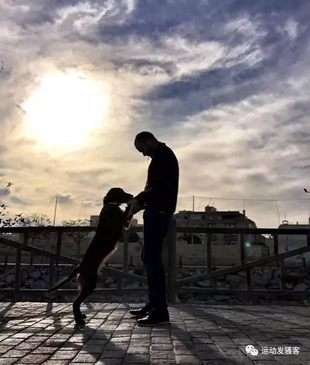 有只狗陪你一起运动健身,那是一件多么幸福的