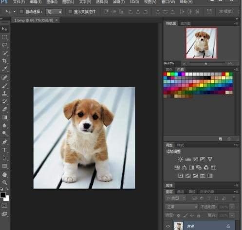 photoshop怎么裁剪圆形头像 ps入门教程