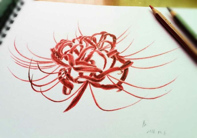 手绘彼岸花教程铅笔画-超美手绘教程,别犹豫,点进来