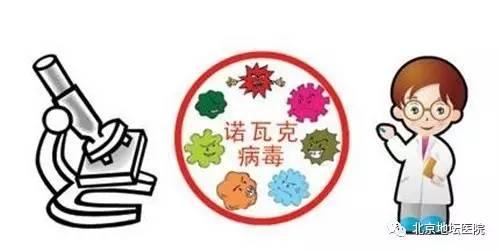 诺如病毒到    您需要防范的是