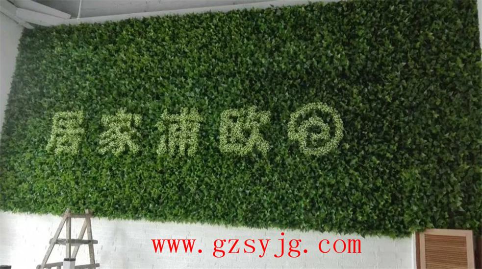 植物墙植物_仿真绿化墙_绿化墙植物墙