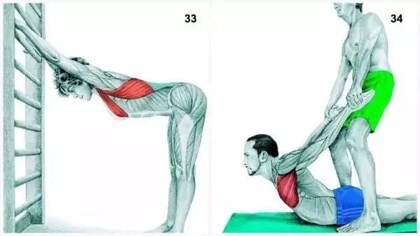 拉伸运动能减肥吗图片