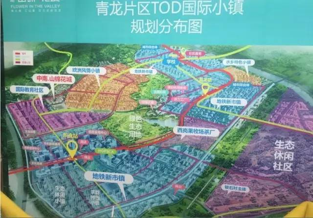 晓庄2020年规划图