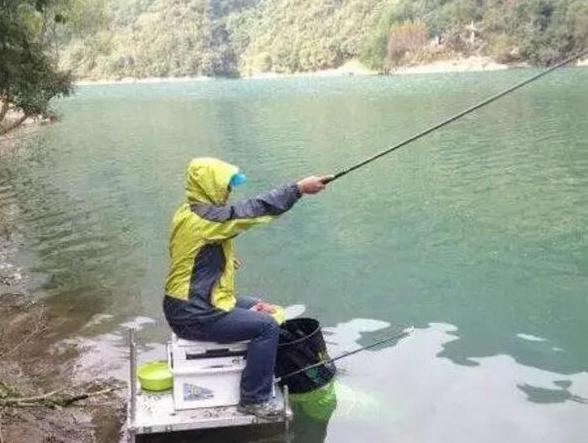 """冬天应该怎样抓住钓鲤鱼的好时机?"""""""