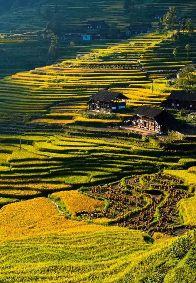 去国际哪里旅游11月国际最佳旅游中