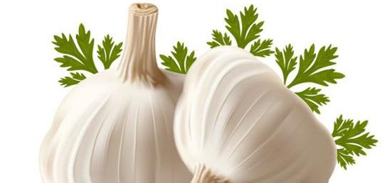 大蒜吃了口臭怎么办 可用这5种方式有效去除