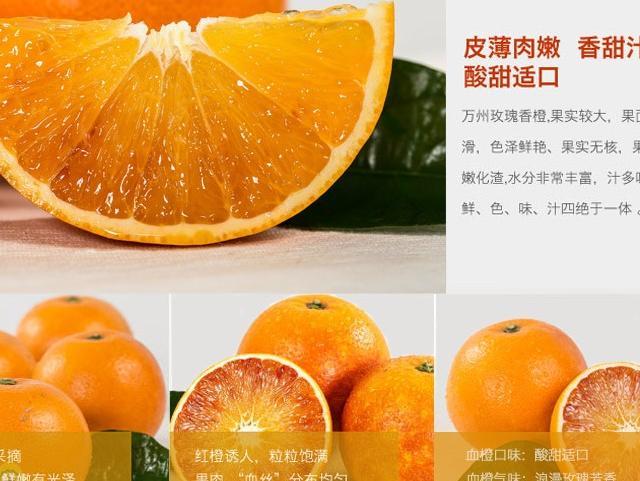 """寻橙之旅这是全国闻名的橙子,堪称""""橙中之王"""""""""""