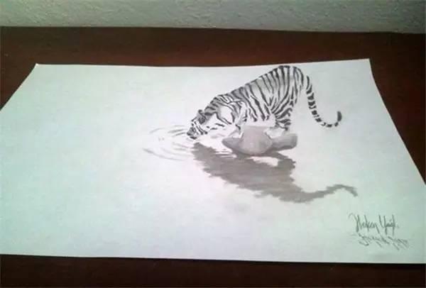 30张非常逼真的3D铅笔画,太牛了