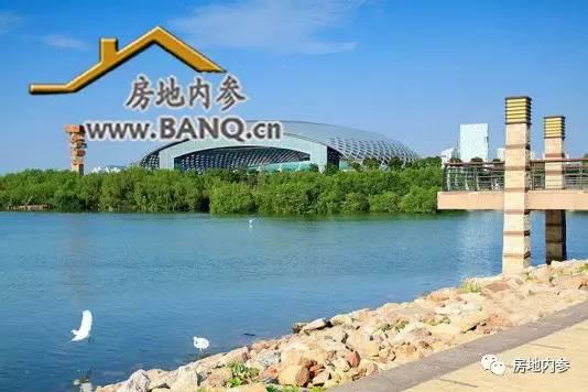 深圳小学生数量 增速称冠全国,鉴证城市吸引力