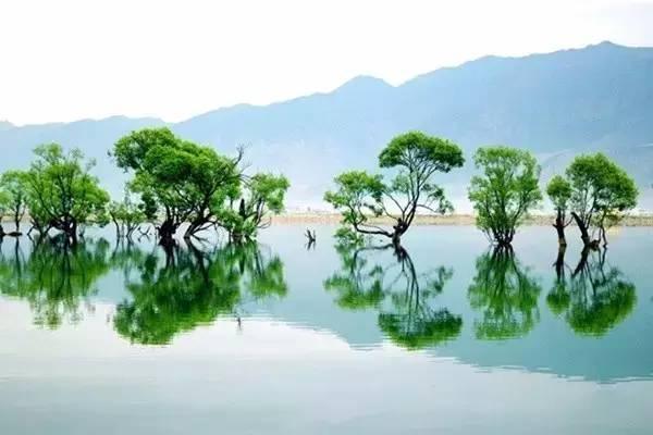 """中国10个最生态小镇!你知道几个?"""""""