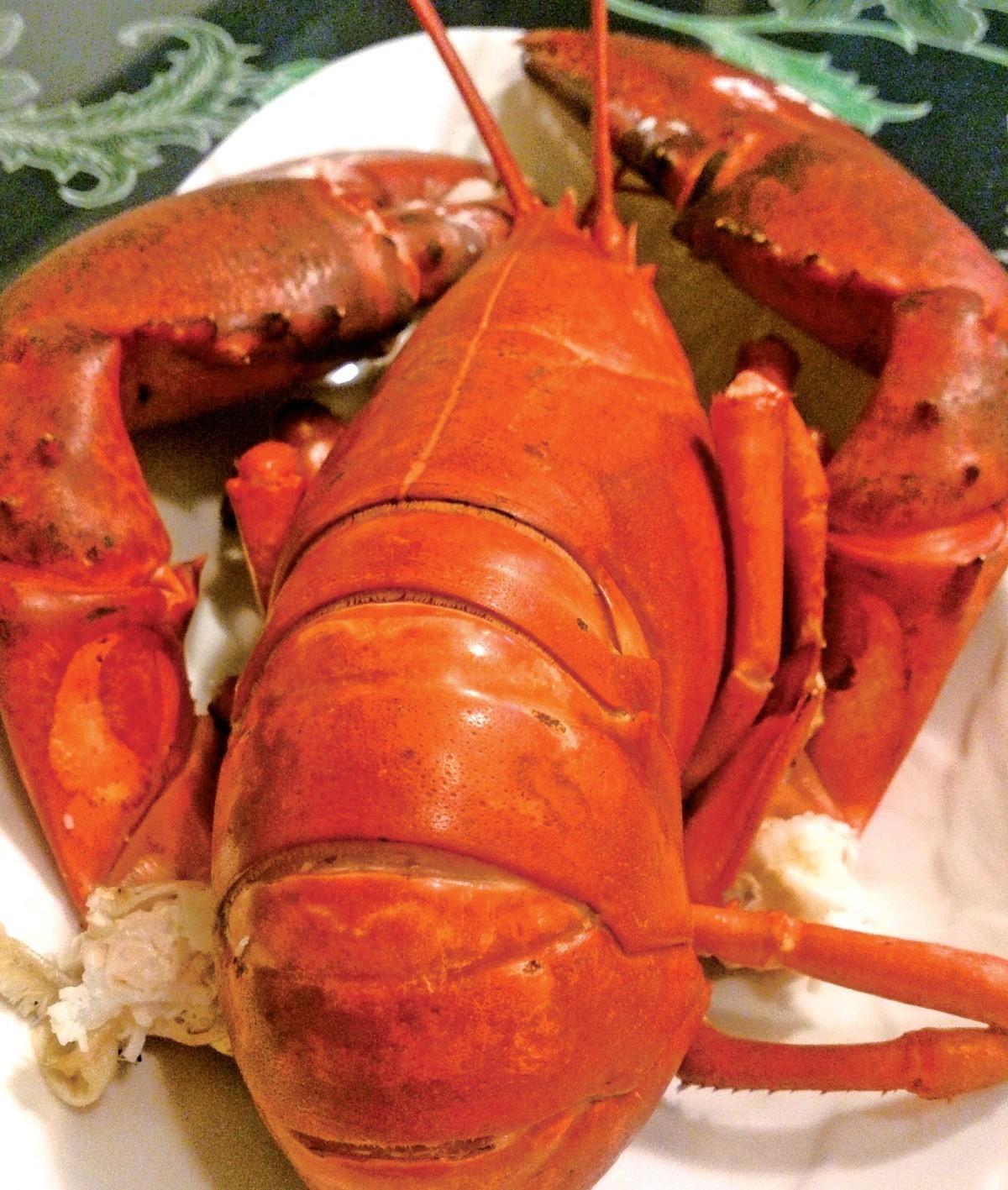 美食 波士顿大龙虾来袭表情包奥特之舅图片