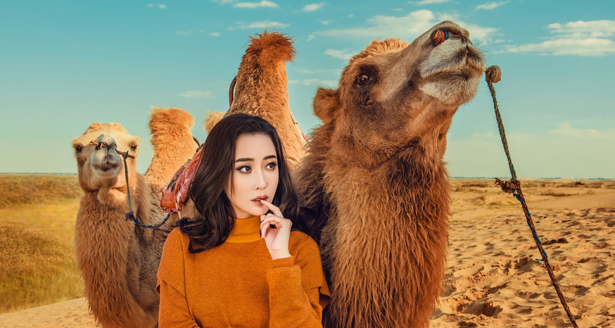 杜若溪大漠牵骆驼写真照曝光 网友:美得像油画!