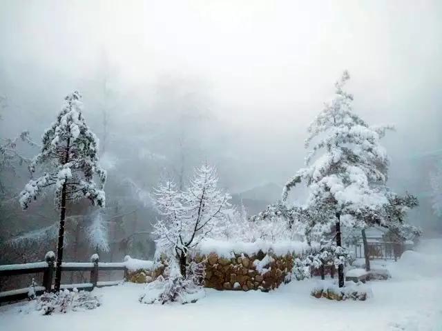 """雪约蒙山, 许你一场如梦似幻的冰雪奇缘"""""""