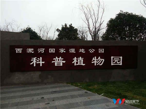"""利辛湿地公园与网谈天下签约""""中国梦品牌战略"""""""