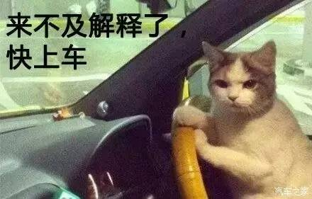 """4天后!厦门一大波道路封闭!吕岭、鹭江、前埔全中!"""""""