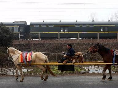 """太会玩河南老汉用俩马抬轿 路人欲摆拍吓哭娃"""""""