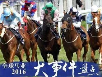 """【盘点】2016年,厉害了我的中国马圈1赛马网"""""""