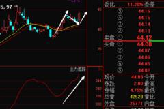 千禾味业603027主力暗中增持35% 节后必定暴涨连连