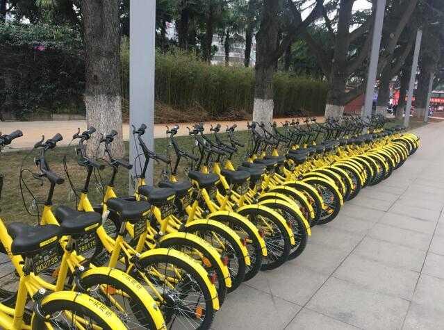 ofo共享单车走出校园进入昆明市区