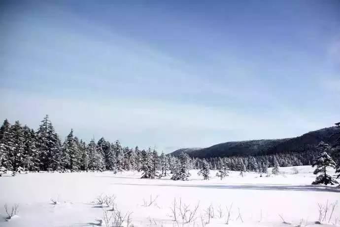 黑龙江醉美雾凇观赏地,这个冬天挨个去!