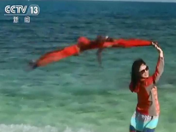 """这岛上居然没有一粒沙,带你去看比马代还美的西沙"""""""