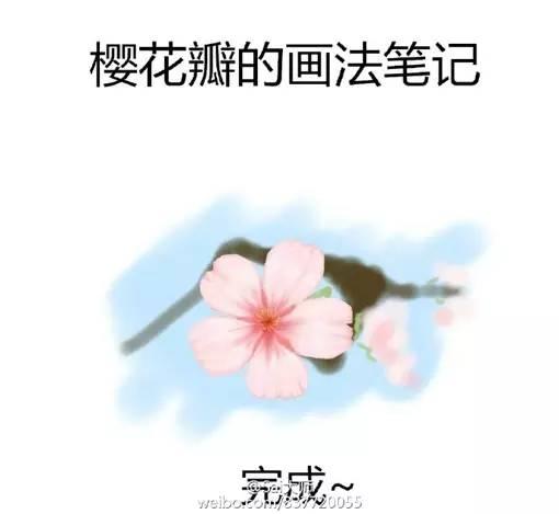 简单又好看的樱花瓣的绘制画法教程