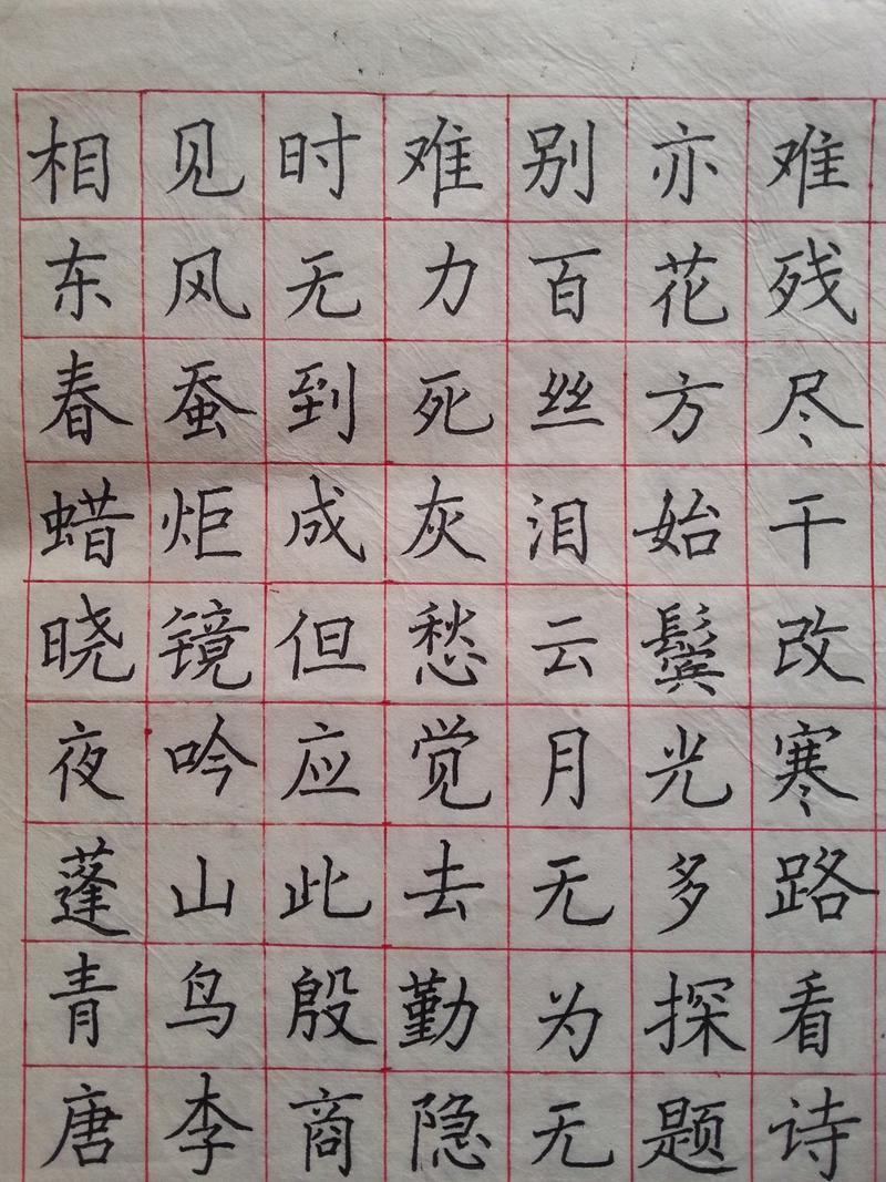 内乡县硬笔书法大赛特邀薛鹏章老师作品欣赏