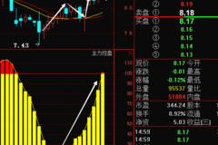 岳阳林纸600963主力强势增仓31% 节后必定暴涨连连