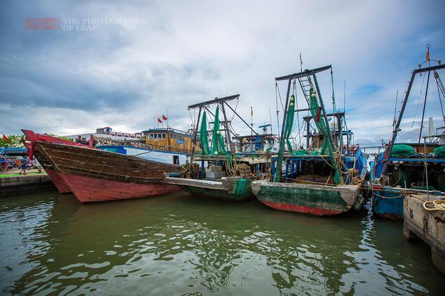 同样是海南,为什么这里的海鲜比三亚便宜这么多 - 寒残一叶 - 寒残一叶的博客