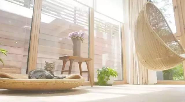 """10年不开空调,远离电视,这个北京男人竟然把家改成这"""""""