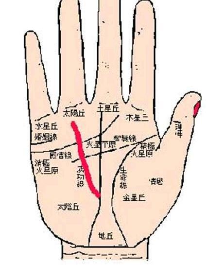 手掌位置图解法