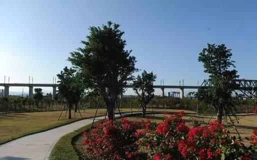 福州南江滨公园平面图