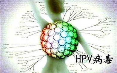 "HPV感染,可导致的相关疾病"""