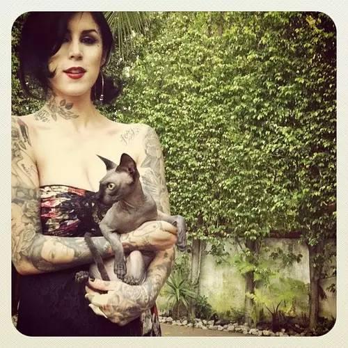 纹身素材——斯芬克斯猫