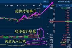 重磅消息:赤天化 东方能源 亚翔集成 中原证券