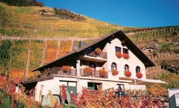 .   肖恩的酒吧   圣彼得酒窖餐厅:   圣彼得酒窖餐厅位于奥地利萨尔茨