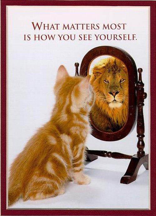 认识自己包括哪些方面,除了分析自己的优缺点外,详细给分。