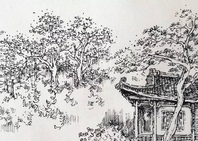 罗克中手绘教程:别人画里漂亮的树,表现方法全在这里!