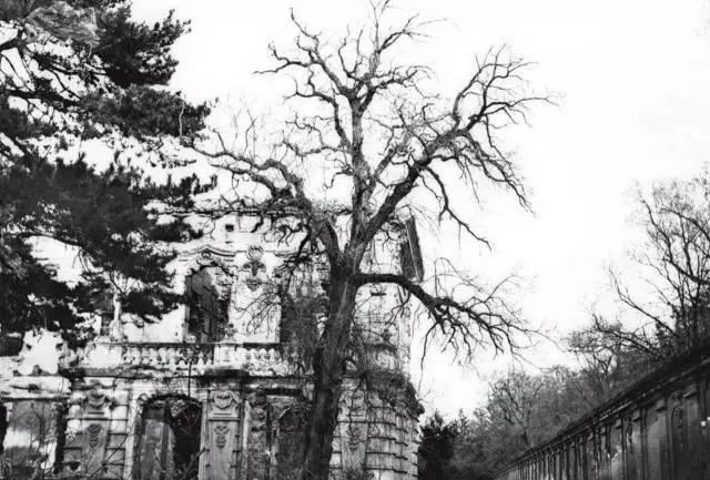 英国曝光圆明园1860年的拍摄照片   引发轰动 - 张庆瑞65 - 百纳袈裟