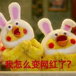 这几天刷屏的表情表情,原来是日本运营商的鹅毛大雪鹦鹉图图片