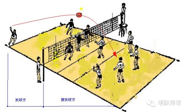气排球必看!接发球和防守的站位,新手5分钟秒