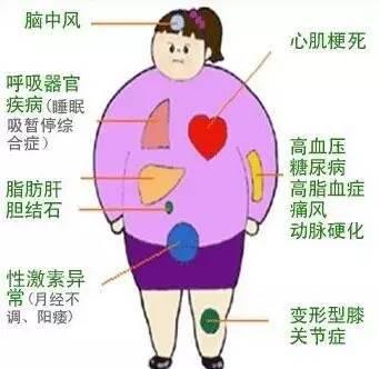 高中的a高中,考点们你们不懂!瘦子胖子语文图片