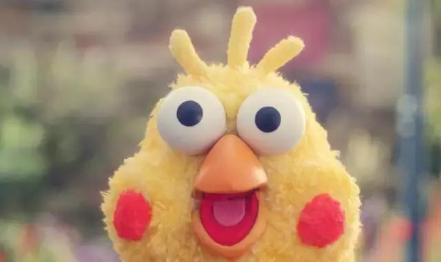 春节表情包拿去,这里有两只鹦鹉说:祝你鸡年大吉图片